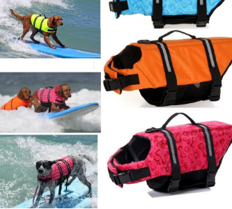 Don't Go To The Beach Without This Cool Dog Life Jacket