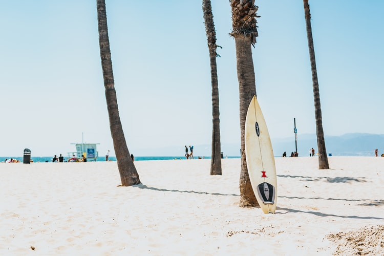 Slater Surfboards: Get Best Advice From Experts